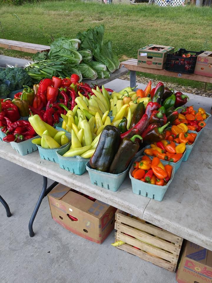 Peters Township Farmers Market - Vendors
